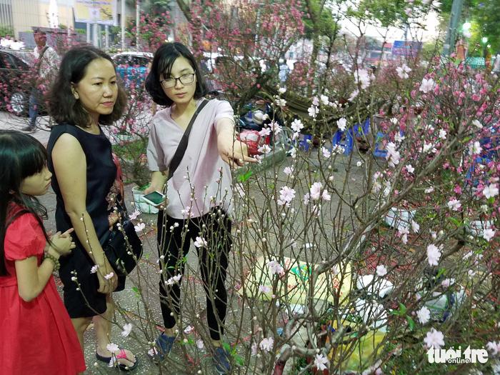 27 Tết: Đào Bắc giảm giá, dân Sài Gòn đổ xô lựa mua - Ảnh 4.