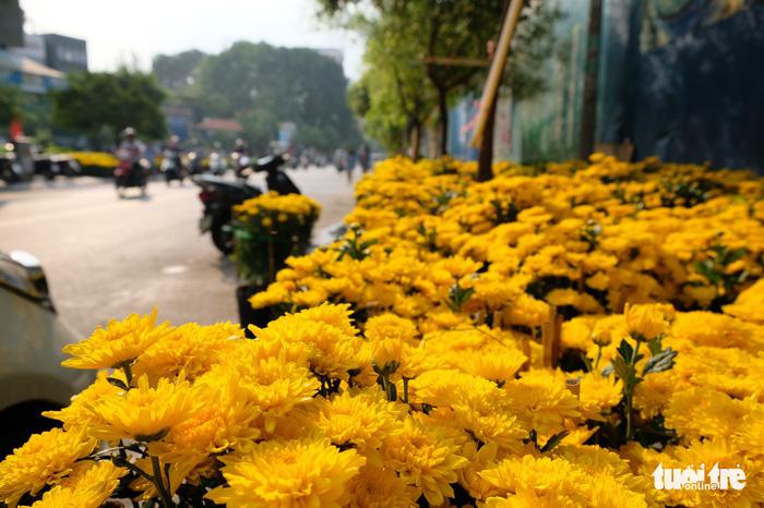 Màu tết rực rỡ tràn ngập phố Sài Gòn  - Ảnh 1.
