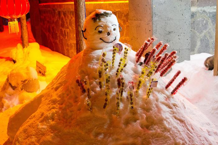 Ngôi làng tuyết trắng đẹp như trong cổ tích ở Cáp Nhĩ Tân - Ảnh 6.