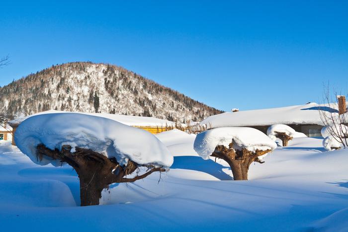 Ngôi làng tuyết trắng đẹp như trong cổ tích ở Cáp Nhĩ Tân - Ảnh 7.