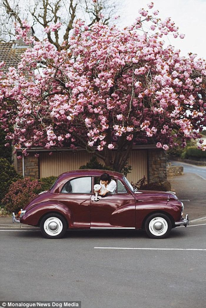 Cặp đôi kiếm bộn tiền nhờ du lịch và chụp ảnh - Ảnh 5.
