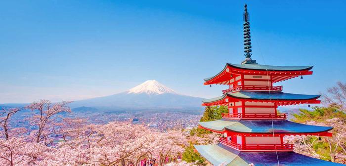 Đi Nhật Bản ngắm hoa anh đào ở đâu đẹp nhất? (phần 2) - Ảnh 1.