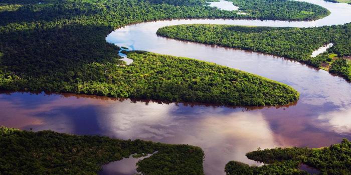 Những dòng sông độc nhất vô nhị thế giới - Ảnh 5.