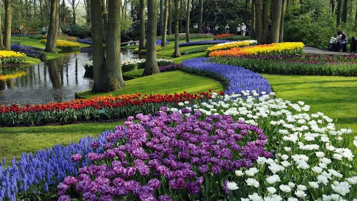 7 nơi ngắm hoa mùa xuân đẹp ngất ngây - Ảnh 3.