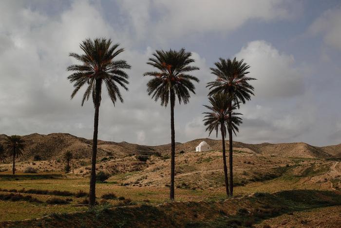 Cuộc sống của các gia đình dưới lòng đất ở Tunisia - Ảnh 5.