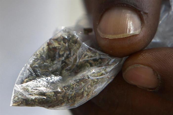 Y tế Mỹ báo động vì cần sa tẩm thuốc diệt chuột - Ảnh 2.