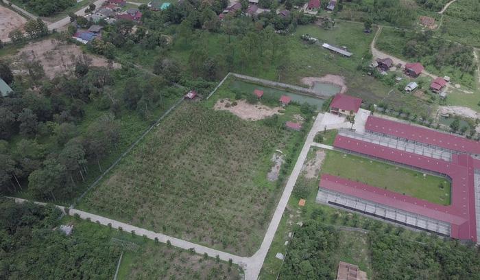 Ở Lào nuôi hổ đem bán dễ như nuôi chó - Ảnh 2.