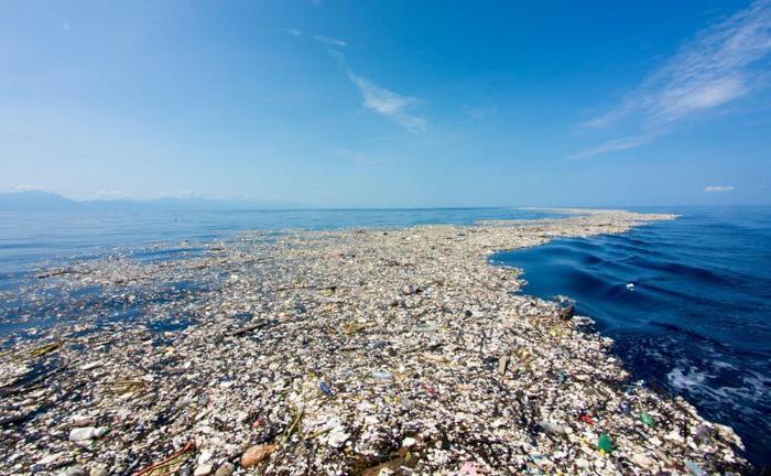 Các nhà khoa học vô tình tìm ra enzyme tiêu hủy được nhựa - Ảnh 1.