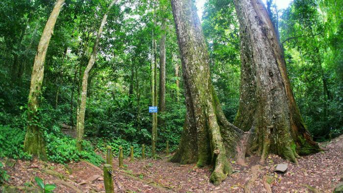 Khám phá 30 địa điểm du lịch Việt Nam - Phần 2 - Ảnh 14.