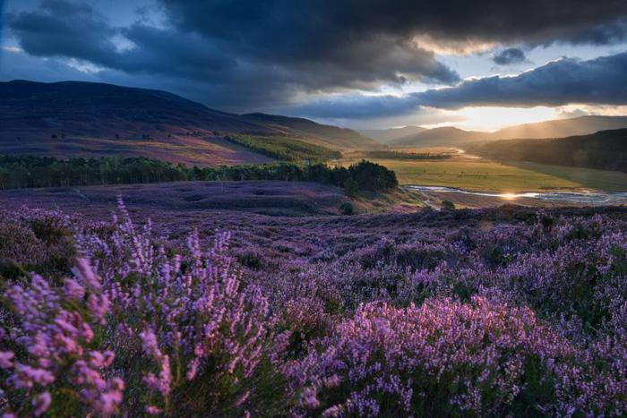Ngắm thiên nhiên đẹp yên bình nhân Ngày Trái đất - Ảnh 7.