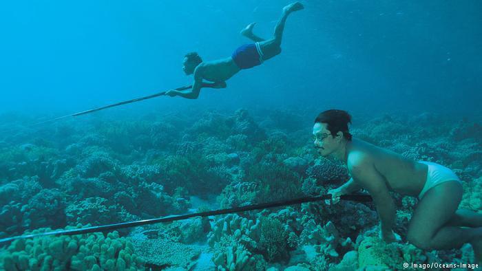 Người bơi lặn như rái là có thật? - Ảnh 7.