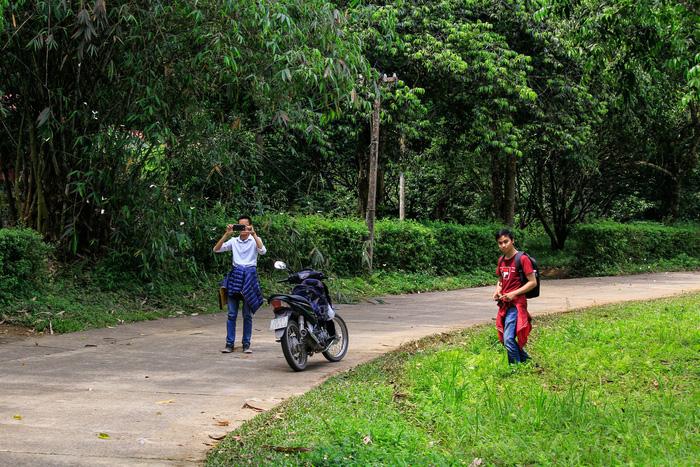 Tháng 4, đến rừng Cúc Phương săn bướm - Ảnh 9.