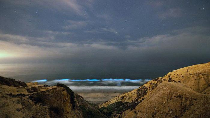 Đi canh sóng biển ma quái phát sáng trong đêm - Ảnh 5.