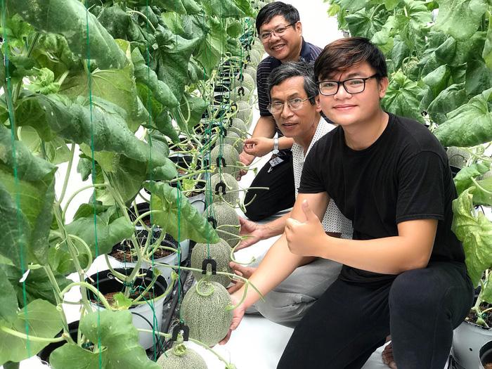 Nhà vườn trồng dưa lưới Nhật Bản của ông chủ 9x - Ảnh 2.