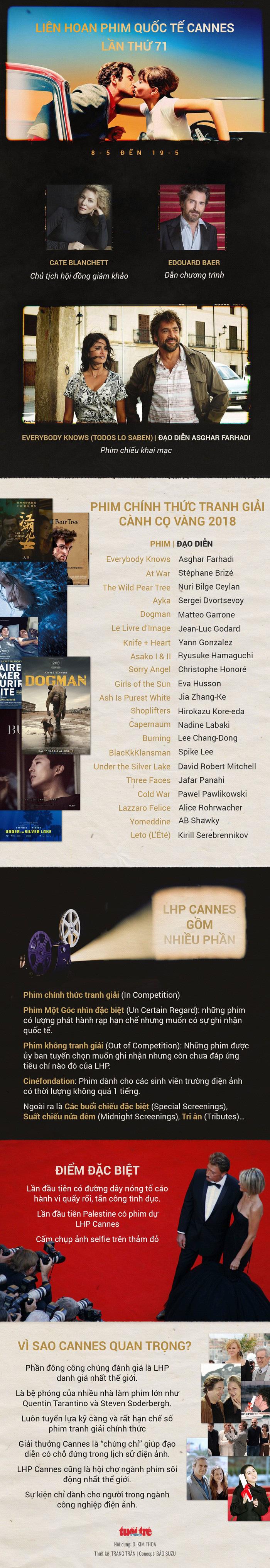 Dưới sức ép của Cate Blanchett, Cannes cam kết tôn trọng phụ nữ - Ảnh 4.