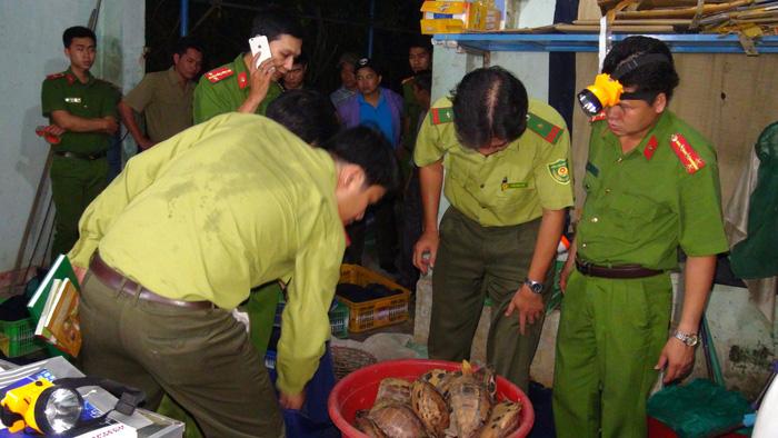 Quảng Nam phá đường dây buôn bán động vật hoang dã - Ảnh 1.