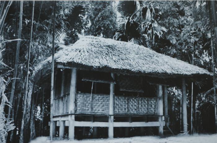 Triển lãm 60 năm nhà sàn Bác Hồ trong Phủ Chủ tịch - Ảnh 2.