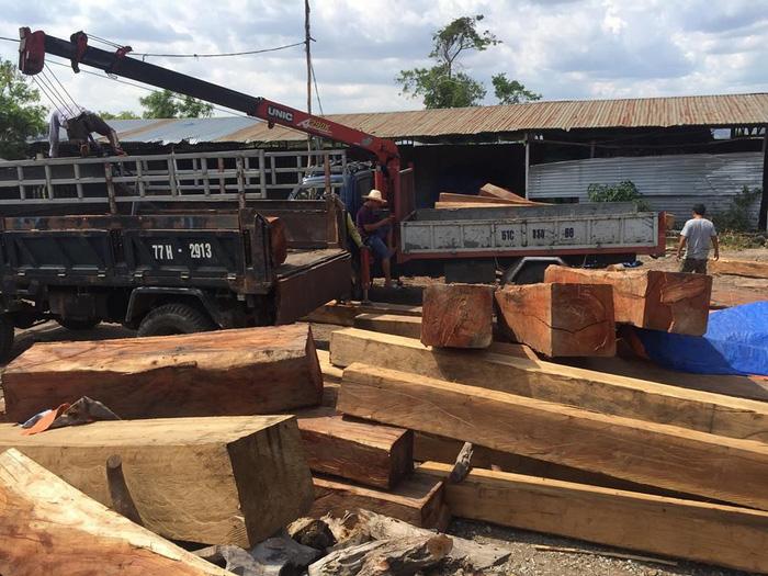 Bắt giữ một giám đốc tàng trữ gỗ trái phép ở Gia Lai - Ảnh 1.