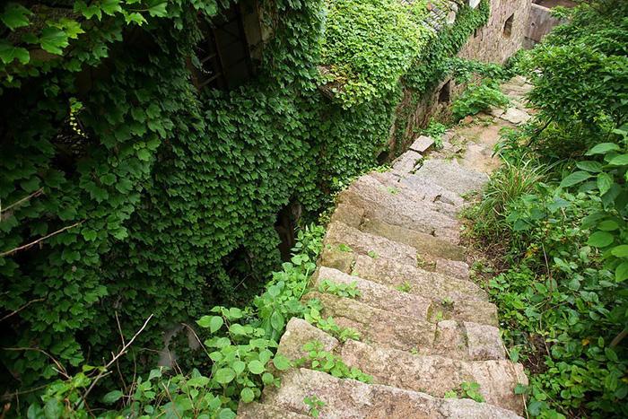 Làng chài phủ thảm thực vật xanh tươi ở Trung Quốc - Ảnh 12.