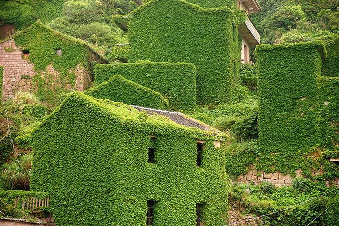 Làng chài phủ thảm thực vật xanh tươi ở Trung Quốc - Ảnh 13.