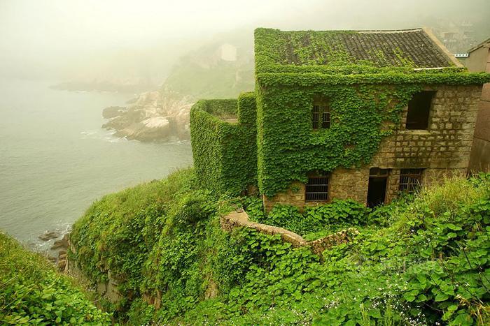 Làng chài phủ thảm thực vật xanh tươi ở Trung Quốc - Ảnh 15.