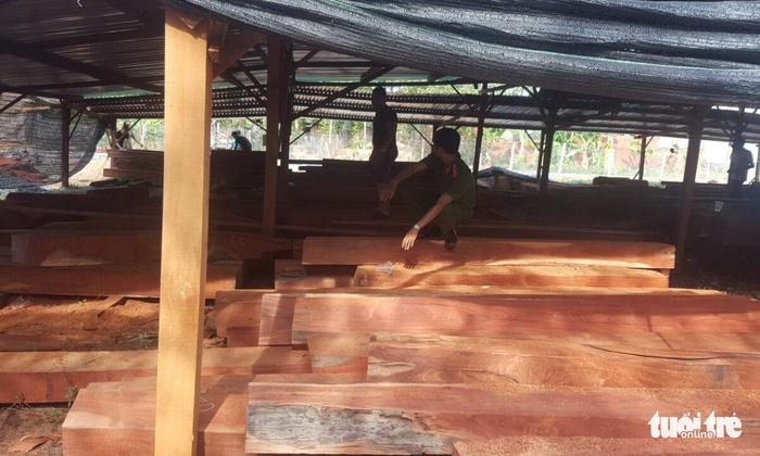 Phượng 'râu' gom gỗ quý chuẩn bị làm biệt thự khủng - Ảnh 1.