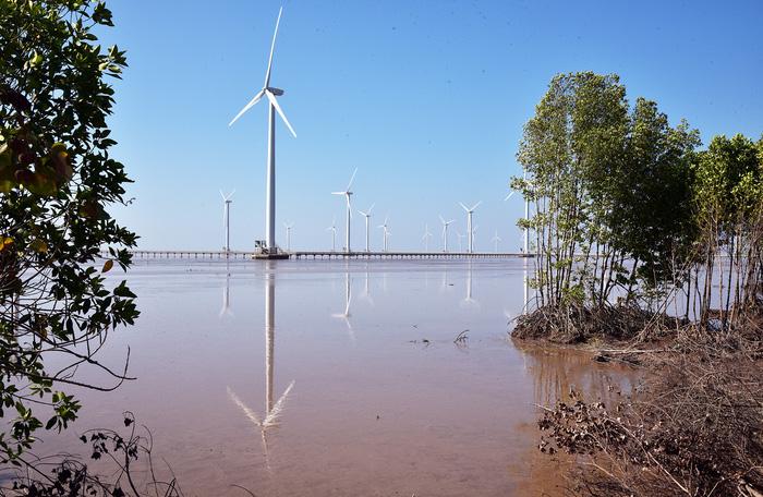 Nhà máy điện gió Bạc Liêu - Ảnh 2.
