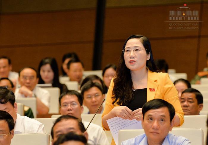 Quốc hội sẵn sàng bấm nút khai sinh 3 đặc khu kinh tế - Ảnh 3.