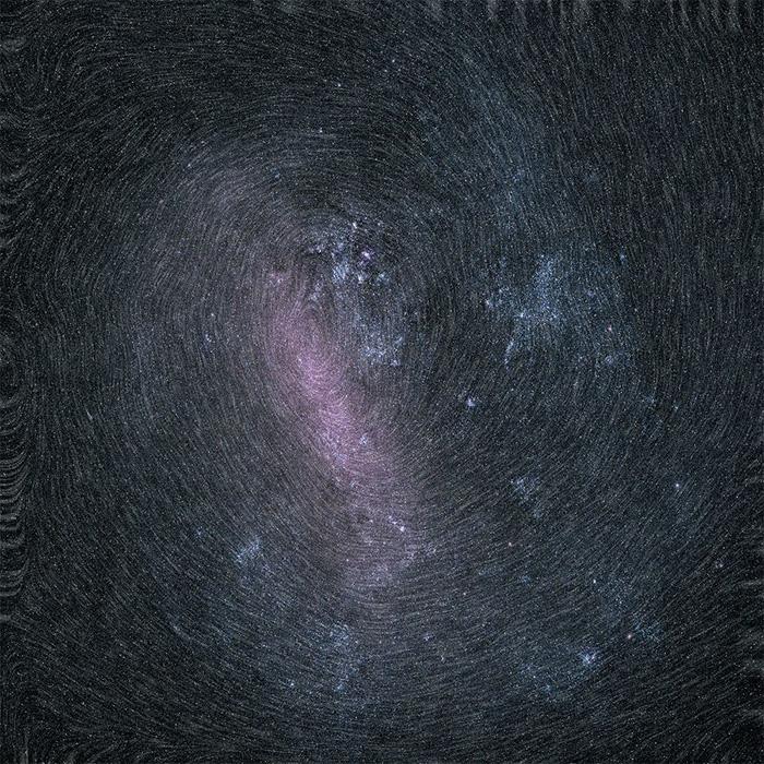 Thiên nga nằm trên rác - ảnh khoa học ấn tượng nhất tháng 4 - Ảnh 2.
