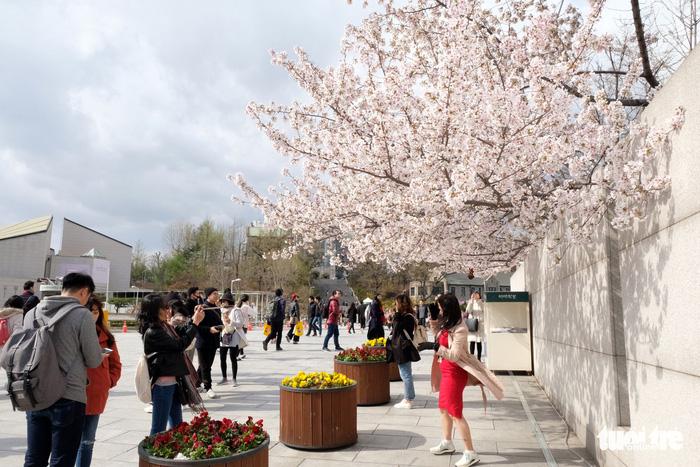Ngắm nhan sắc Đại học nữ lớn nhất thế giới - Ảnh 9.