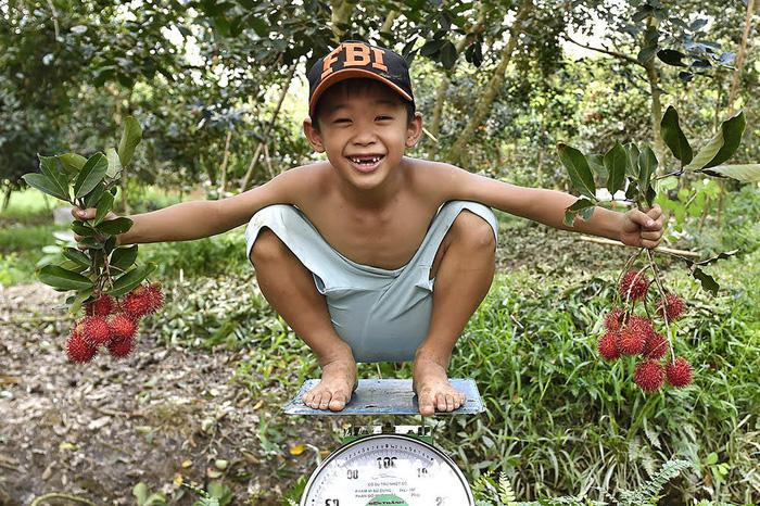Nhiếp ảnh gia Thụy Sĩ 12 năm chụp ảnh Việt Nam - Ảnh 4.