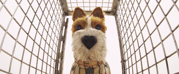 Isle of Dogs: Phim hoạt hình độc lạ vào Lễ thiếu nhi 1-6 - Ảnh 7.