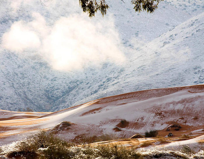 Chuyện khó tin: tuyết rơi phủ trắng sa mạc Sahara - Ảnh 6.
