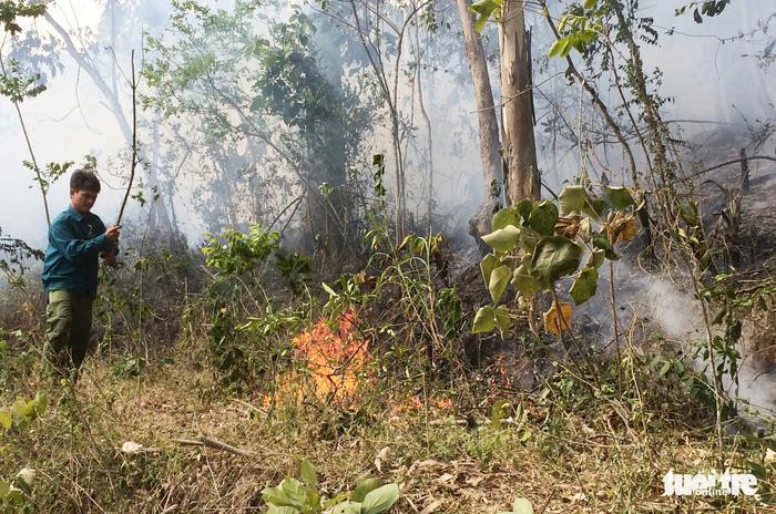 Nghệ An: Cháy rừng thông lây lan ở 3 huyện  - Ảnh 3.