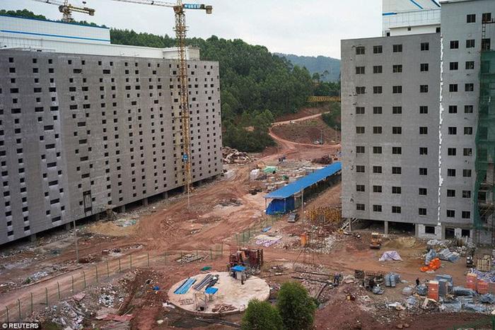 Khách sạn long lanh chỉ để nuôi heo ở Trung Quốc - Ảnh 2.
