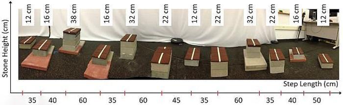 Huấn luyện thành công robot hai chân vượt địa hình phức tạp - Ảnh 2.