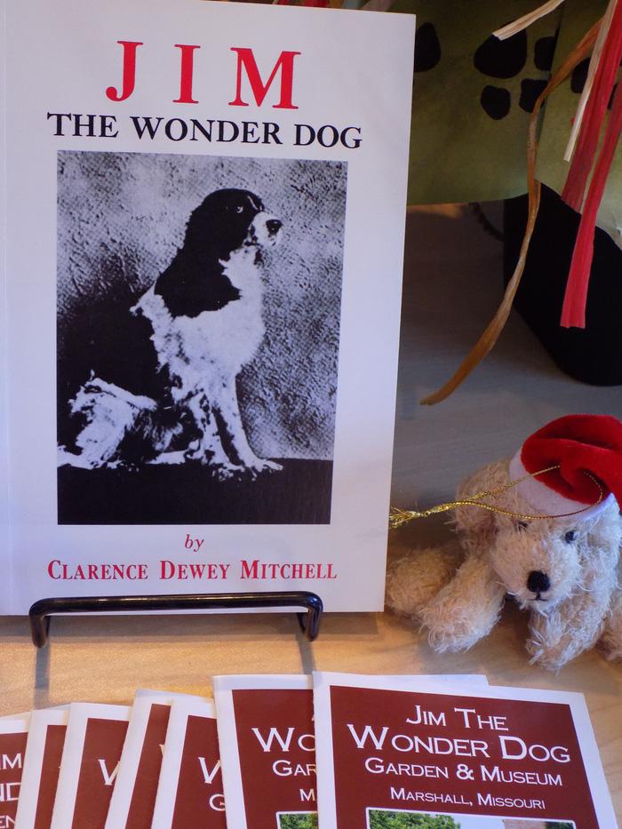 Năm Tuất thăm bảo tàng chú chó Jim - Ảnh 6.