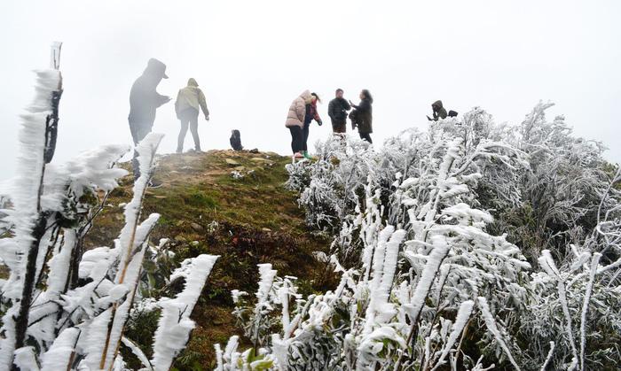 Hà Nội rét dưới 10 độ C, Mẫu Sơn băng giá phủ trắng - Ảnh 4.