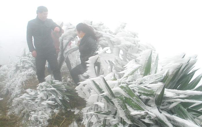 Hà Nội rét dưới 10 độ C, Mẫu Sơn băng giá phủ trắng - Ảnh 2.