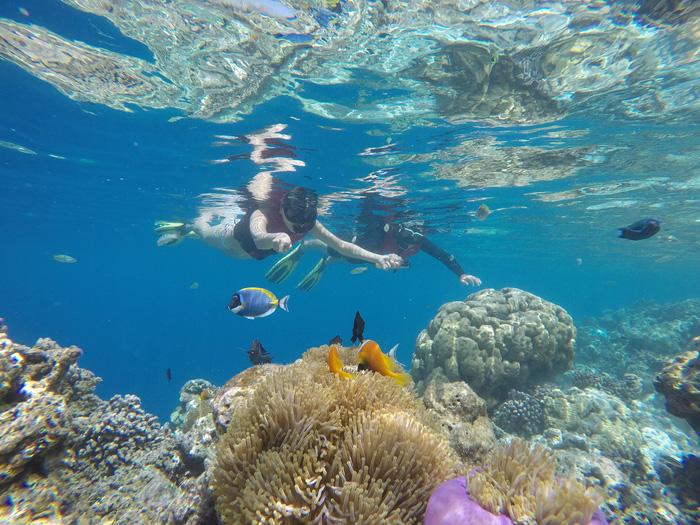 9 điều cần biết trước khi bay đến thiên đường Maldives - Ảnh 3.