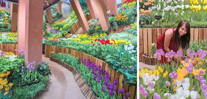 Cung điện hoa tulip rực rỡ ở Nhật Bản - Ảnh 4.
