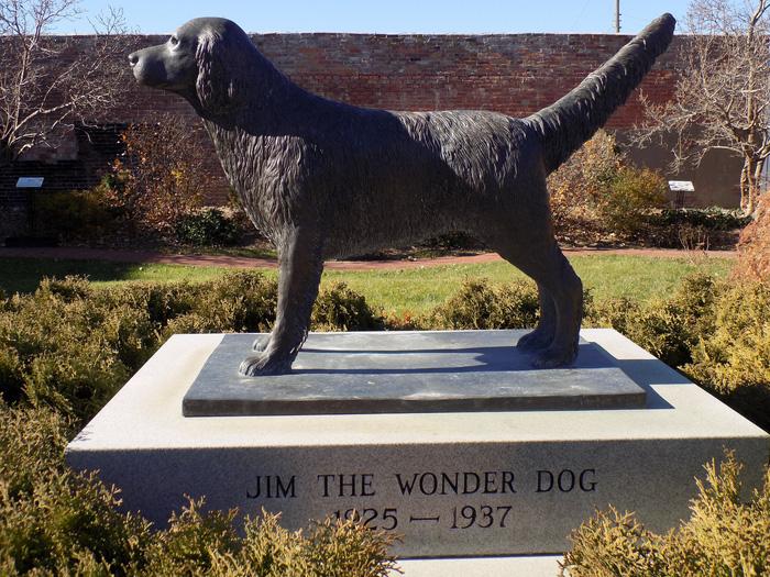 Năm Tuất thăm bảo tàng chú chó Jim - Ảnh 1.