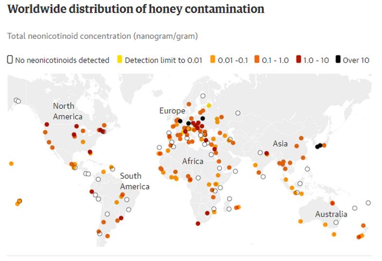 75% mật ong được lấy mẫu trên thế giới bị nhiễm thuốc trừ sâu - Ảnh 3.