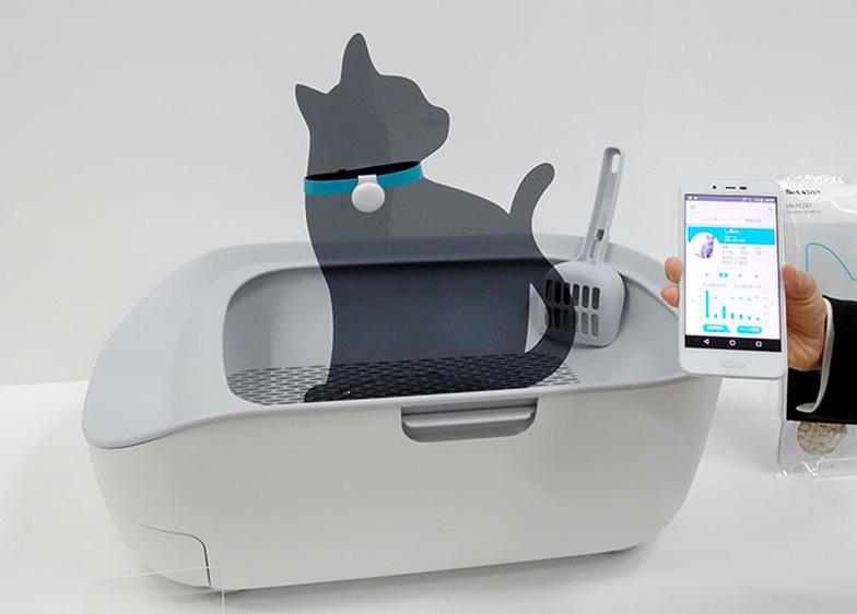 Toilet điện tử cho mèo giá 225 USD, bạn có muốn mua? - Ảnh 1.