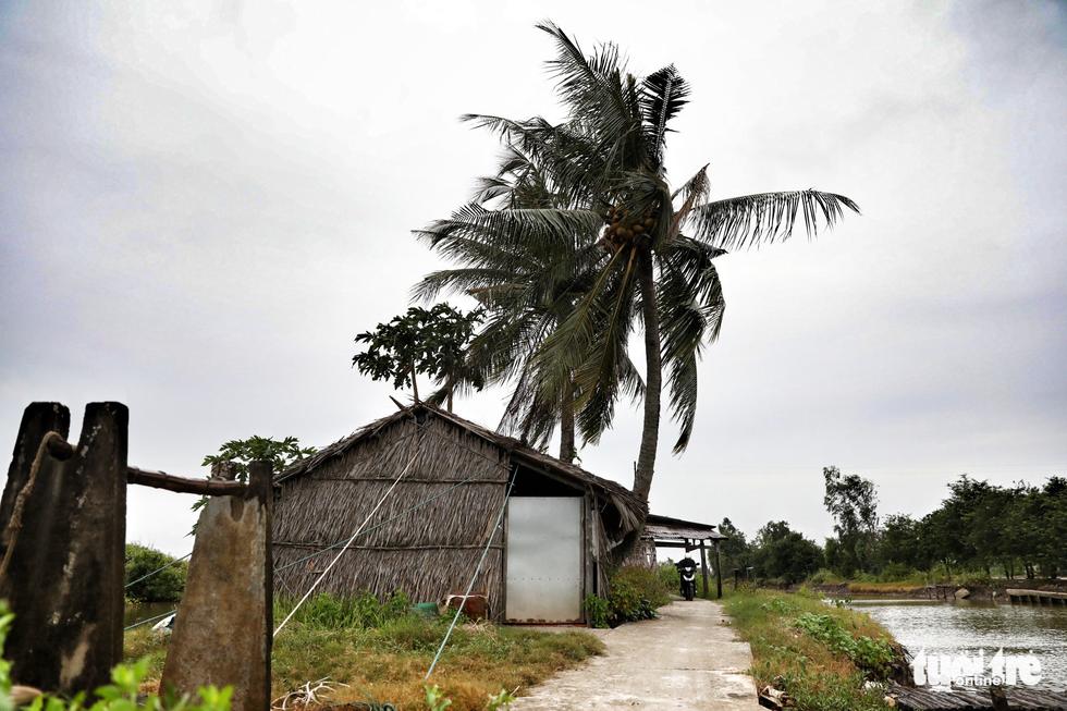 Vào căn nhà cho 300 dân nghèo tránh bão - Ảnh 15.