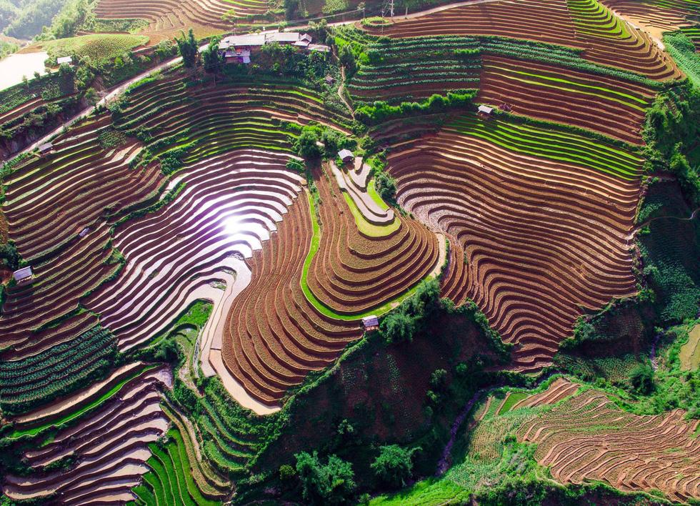 Ngắm rừng vàng biển bạc Việt Nam tại Phú Quốc - Ảnh 3.