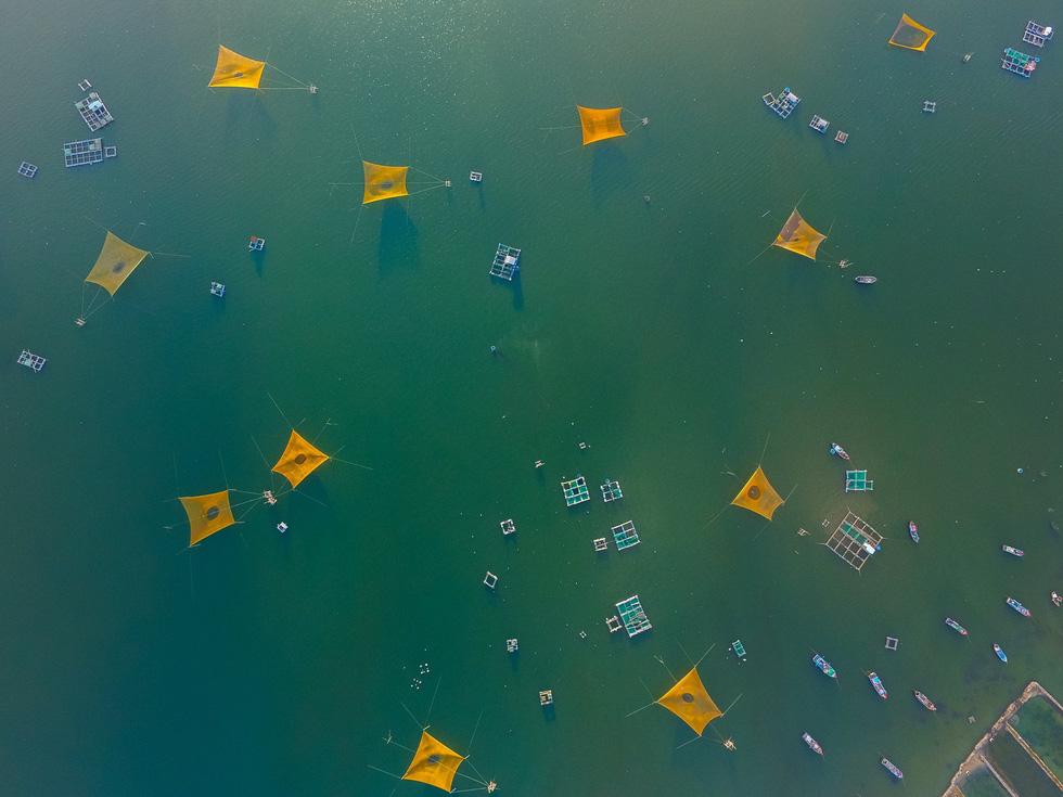 Ngắm rừng vàng biển bạc Việt Nam tại Phú Quốc - Ảnh 4.