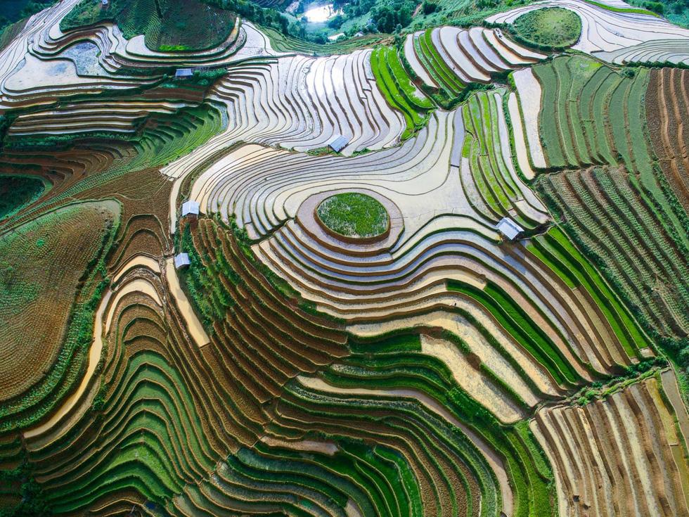 Ngắm rừng vàng biển bạc Việt Nam tại Phú Quốc - Ảnh 8.