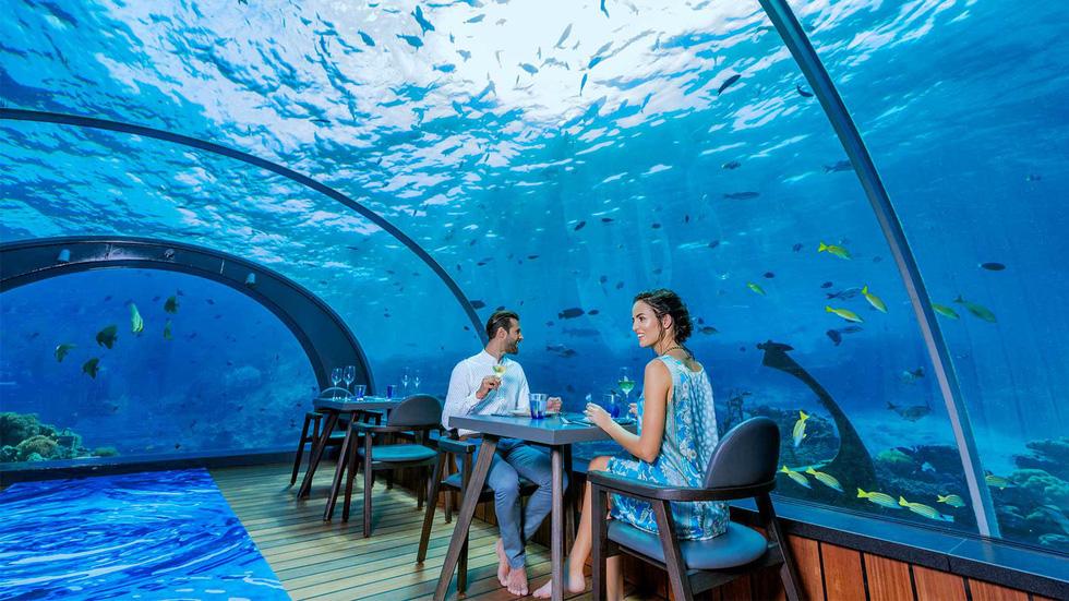 Ăn ngon tại nhà hàng dưới nước lớn nhất thế giới - Ảnh 1.
