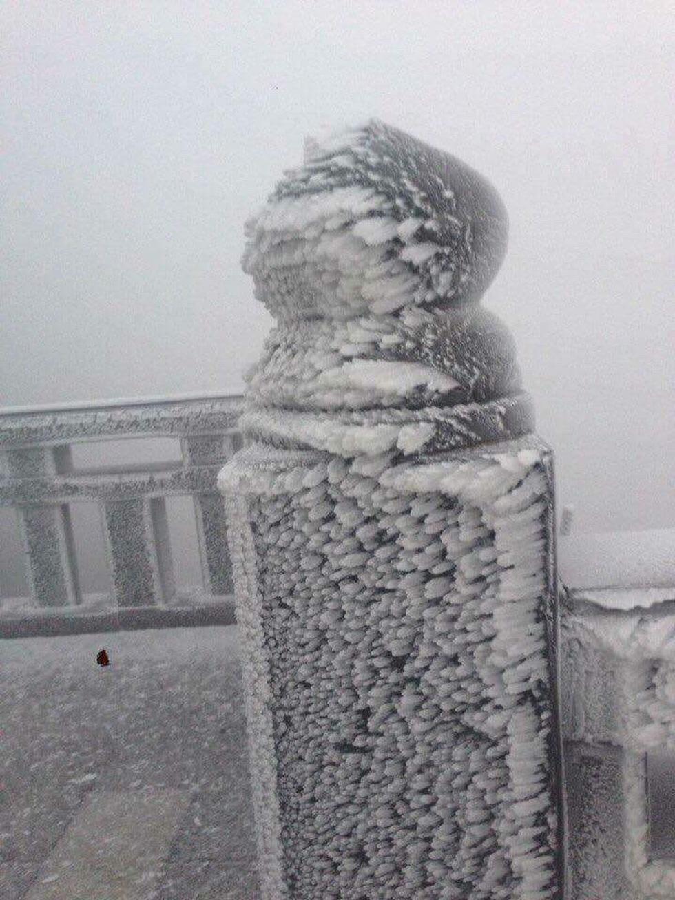 Mưa tuyết phủ trắng đỉnh Fansipan đẹp như cổ tích - Ảnh 4.